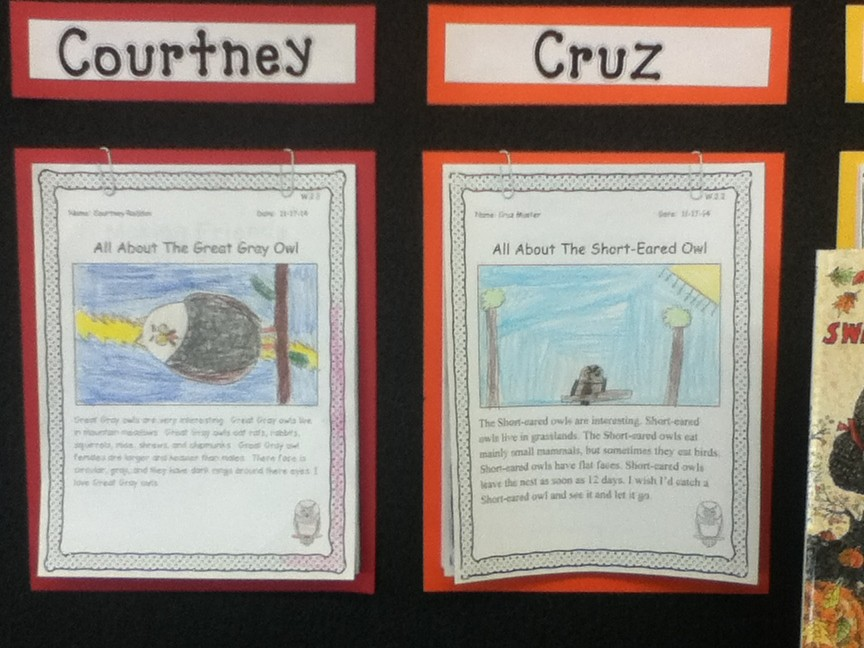2nd grade Publishing